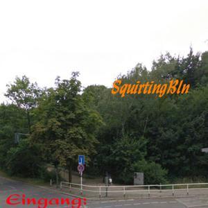 Munsterdamm/Prellerweg (S2-S25 Bahnhof Pristerweg)