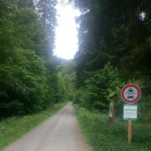 Waldparkplatz an der L 520