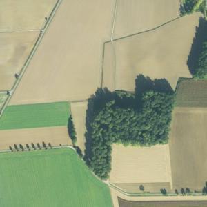 Kleiner Wald in der Nähe vom Wasserturm Lippstadt