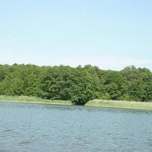 Bucht Am Labussee