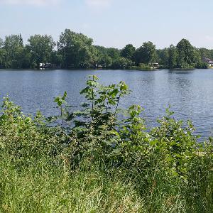 Behlingsee/Bultensee
