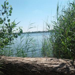 Süße See
