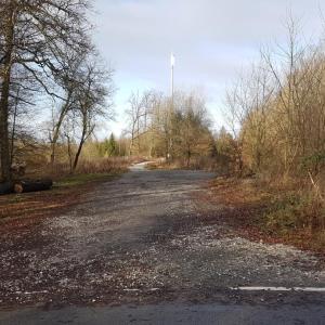 Waldparkplatz Aschenhütte/Mühlenberg