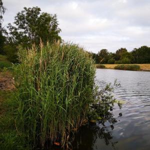 Dölzig Fkk-Badespaß am Kanal:-)