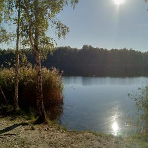 Grüner See - Gurke