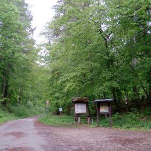 Parkplatz am Nationalpark (Südharz) - Barbis