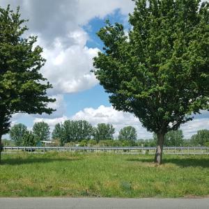Hoyersburg Parkplatz DAN-SAW