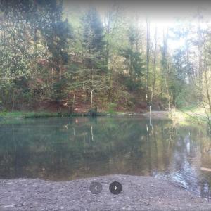 Am Grünen See
