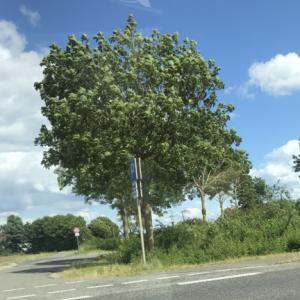 P&R Abfahrt A46 Heinsberg