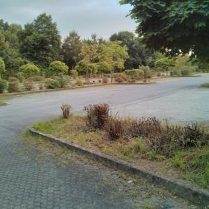 Parkplatz Haunesee Petersberg-Marbach