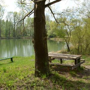 Treffen bei Neustadt a. d. Donau