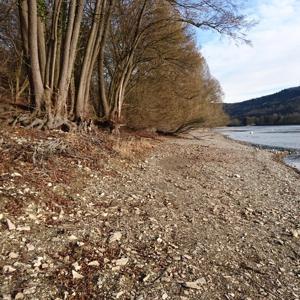 Gailingen am Rhein - Rheinufer