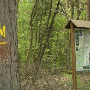 Undeloh FKK Naturistenweg Wanderweg