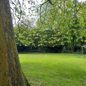 Park am Buddenturm