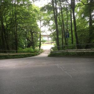 Heideweg an den Bahngleisen