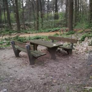 Waldparkplatz im Weselerwald
