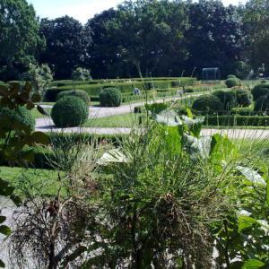Rosengarten (Gesundbrunnen)